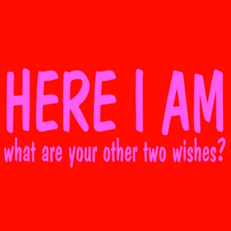 Here I Am What Are Your Other Two Wishes?