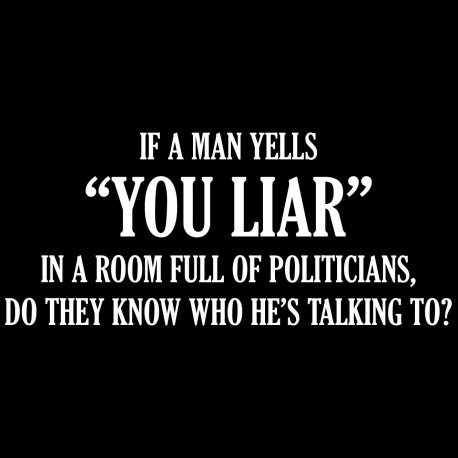 If A Man Yells You Liar In A Room Full Of Politicians Do They Know Who He's Talking To?