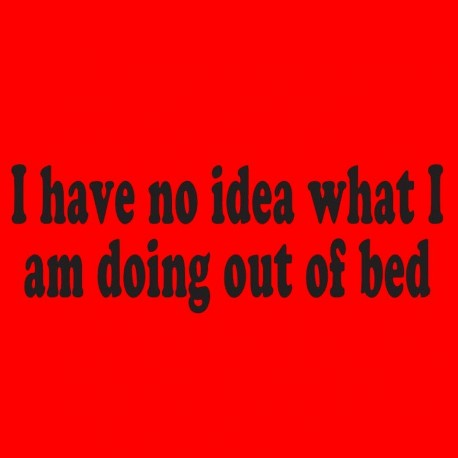I Have No Idea What I Am Doing Out Of Bed