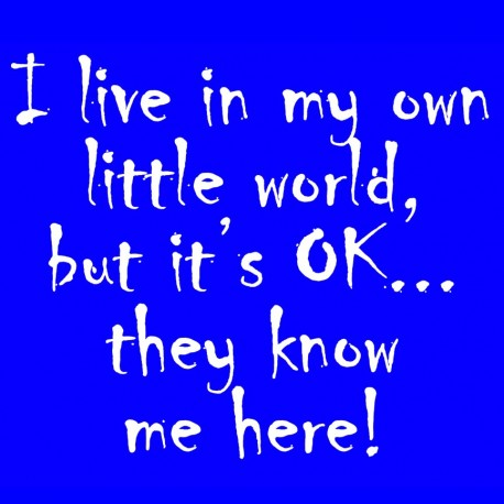 I Live In My Own Little World But Its Ok They Know Me Here