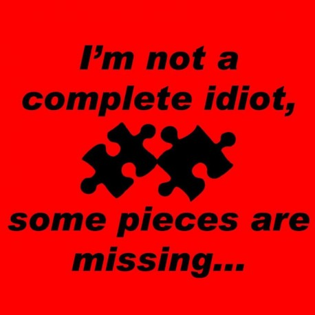 I'm Not A Complete Idiot Some Pieces Are Missing