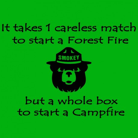 It Takes 1 Careless Match For A Forest Fire And A Whole Box For A Campfire