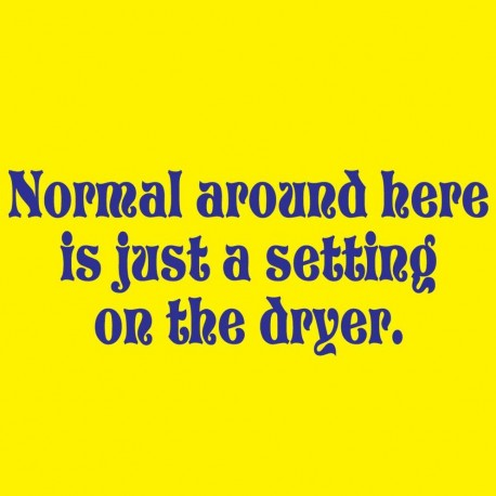 Normal Around Here Is Just A Setting On The Dryer