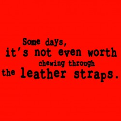 Some Days Its Not Even Worth Chewing Through The Leather Straps