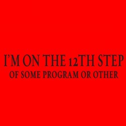 12th Step of Some Program