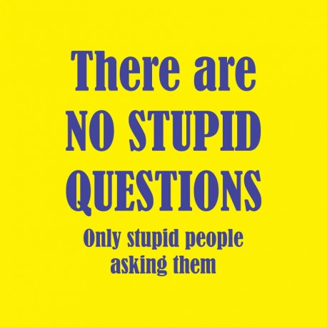 There Are No Stupid Questions Only Stupid People Asking Them
