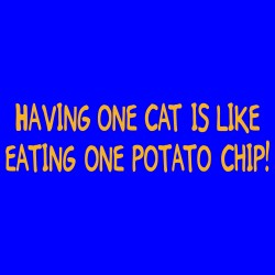 Having One Cat Is Like Eating One Potato Chip!