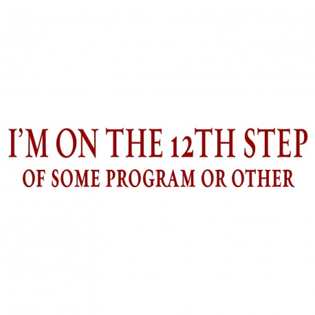 I'm On The 12th Step Of Some Program Or Other