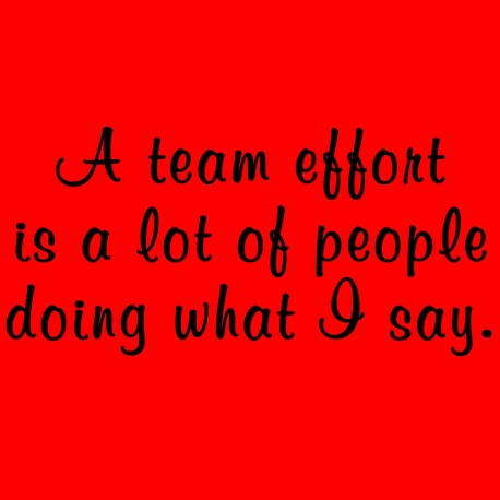 A Team Effort Is Alot of People Doing What I Say